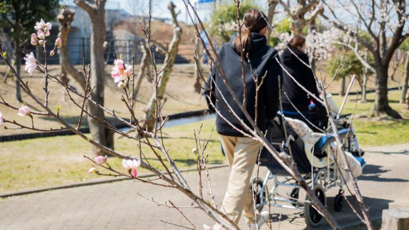 特別養護老人ホームふたみ苑が三重県営サンアリーナへお花見にお出かけしました!