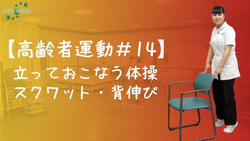 【高齢者運動#14】立っておこなう体操スクワット・背伸び