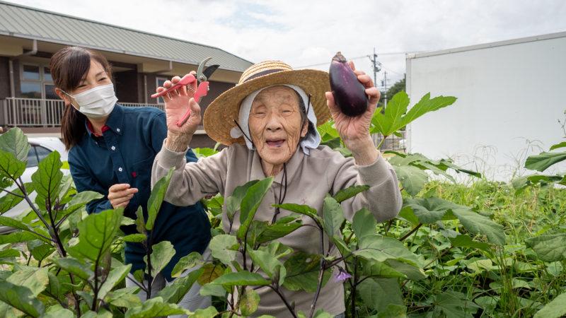 グングン成長!うがた苑で畑の夏野菜を収穫しました!