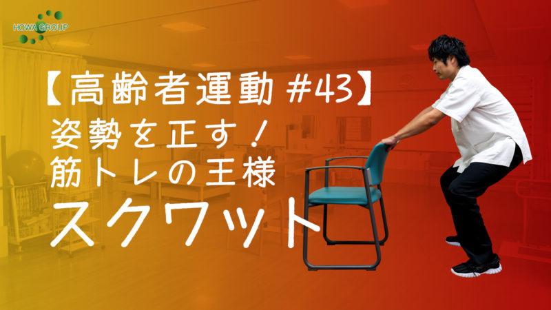 【高齢者運動#43】姿勢を正す!筋トレの王様スクワット!