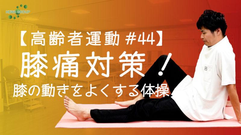 【高齢者運動#44】膝痛対策!膝の動きをよくする体操!