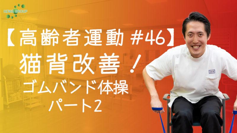 【高齢者運動#46】猫背改善!ゴムバンド体操パート2!